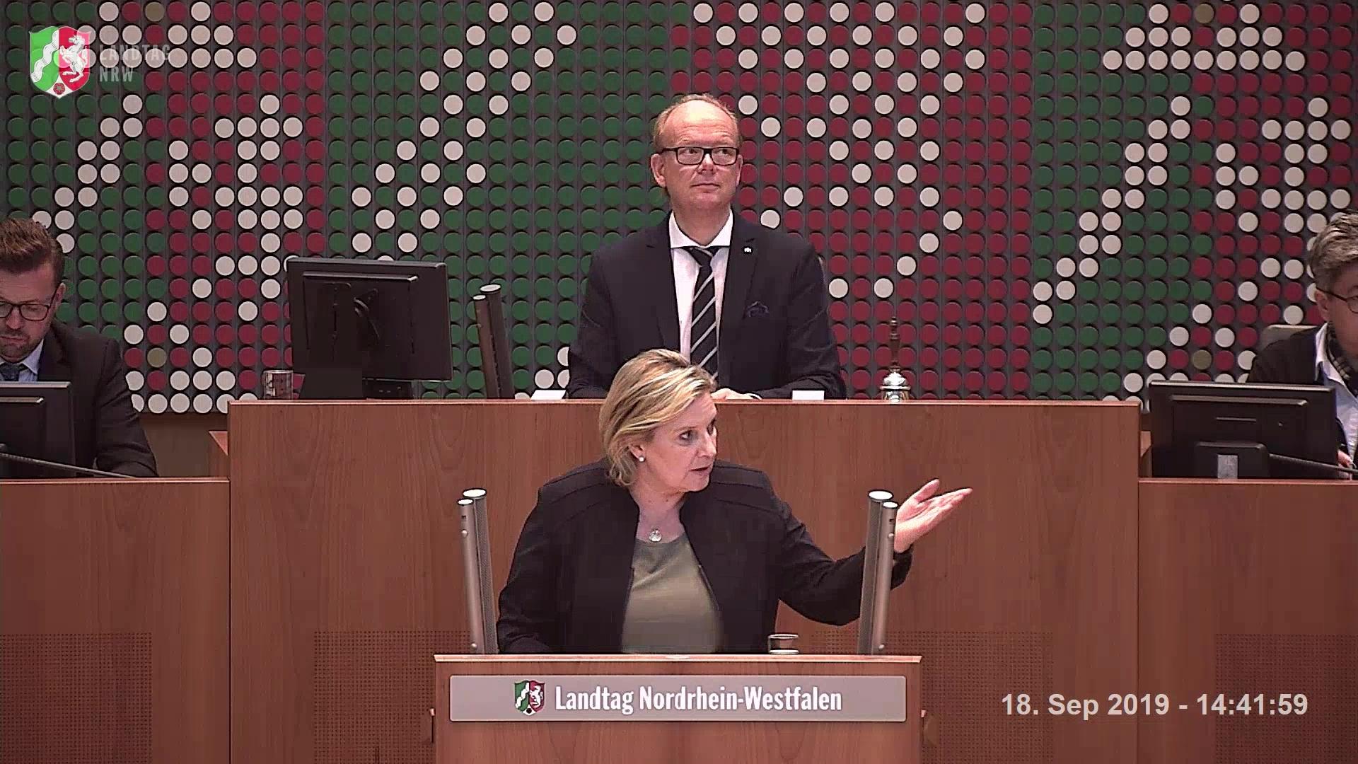"""Rede zum Antrag der Fraktion Bündnis 90/DIE GRÜNEN """"Die Versorgung psychisch kranker und gestörter Gefangener verbessern"""""""